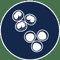BMMC Icon