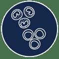 PBMC Icon
